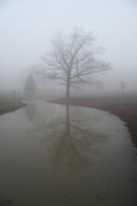 mist03