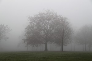 mist06