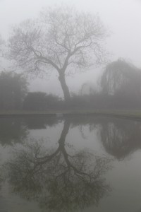 mist10