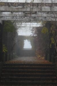 mist16