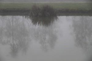 mist18